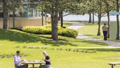 Arlinghton Park feature